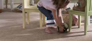 Summit Cleaning Services for Carson City Carpet Cleaning, North Lake Tahoe Carpet Cleaning, Reno Carpet Cleaning, Minden Carpet Cleaning and Gardnerville Carpet Cleaning