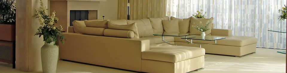 Summit Cleaning Services is a full-service leather care company serving the North Lake Tahoe and the Carson City area.